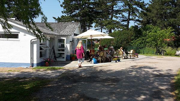 cafe klint - den første lørdag under sommerkurserne 2015