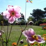 Blomst-flag 3