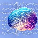 brain_schumann_resonance_signal